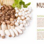 きのこに含まれる栄養価を効果・効能とその特徴について