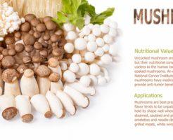 きのこ 栄養 効果 効能 特徴