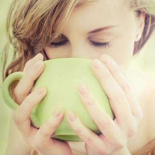えのき  茶 作り方 飲み方