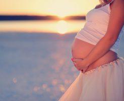 なめこ 栄養 妊婦